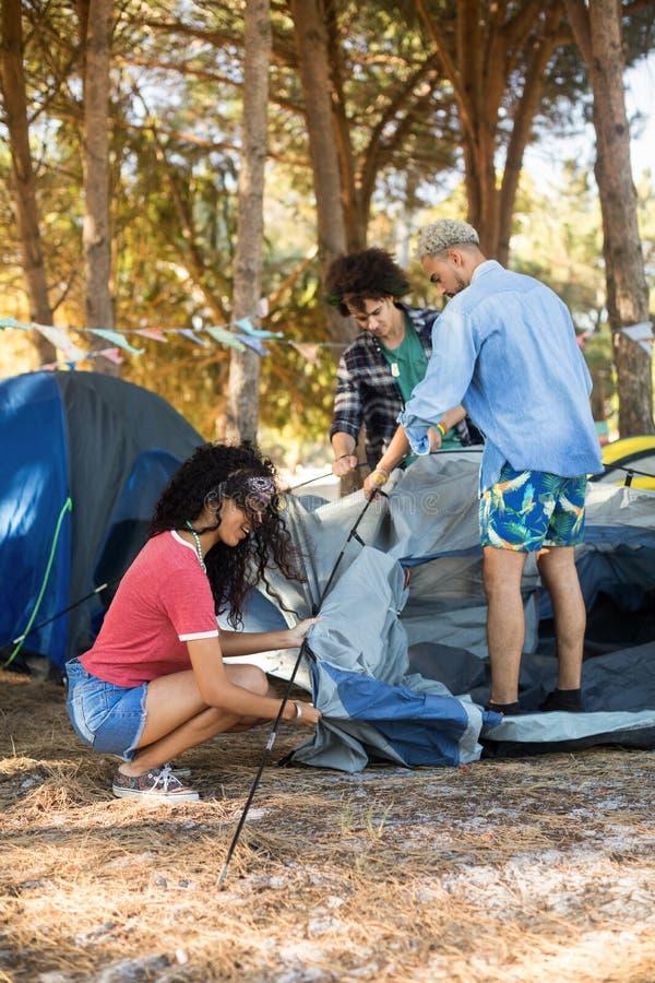 设定在领域的年轻朋友帐篷 免版税图库摄影