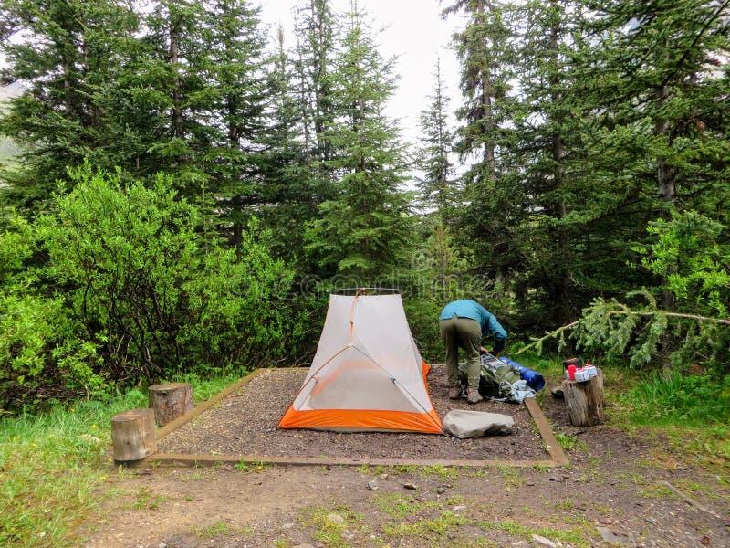 设定她的在帐篷垫的一个年轻女性徒步旅行者的行动射击单身帐篷 库存照片
