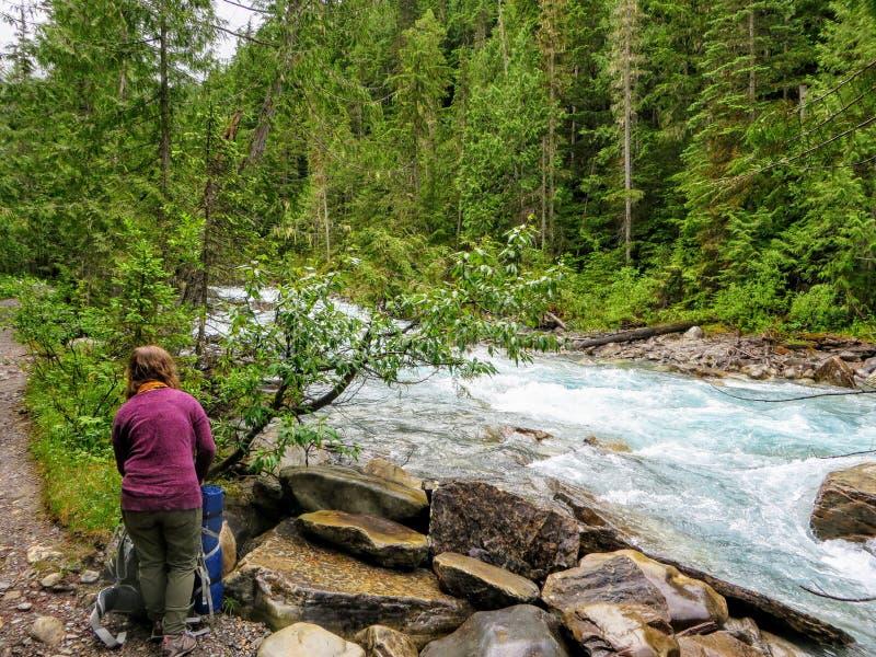 设定她的露营地的年轻女人徒步旅行者在沿绿色常青森林包围的一条美丽的河的一个遥远的营地 库存图片