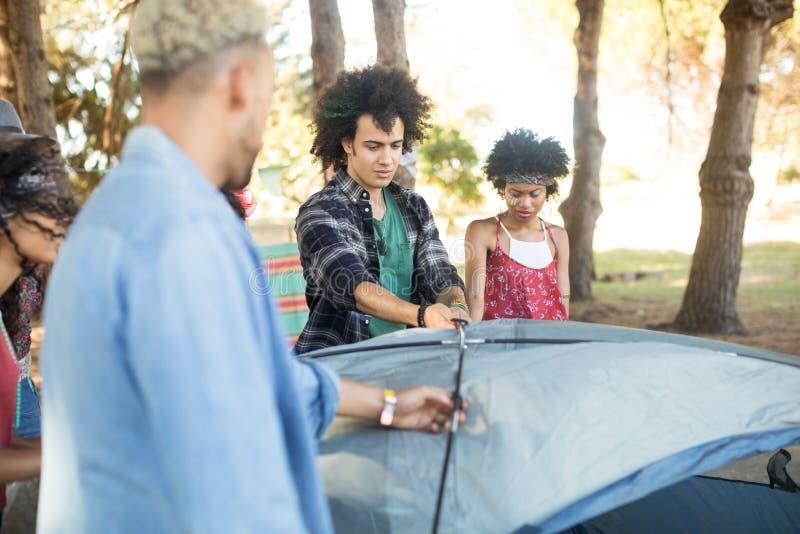 设定帐篷的年轻朋友 免版税图库摄影