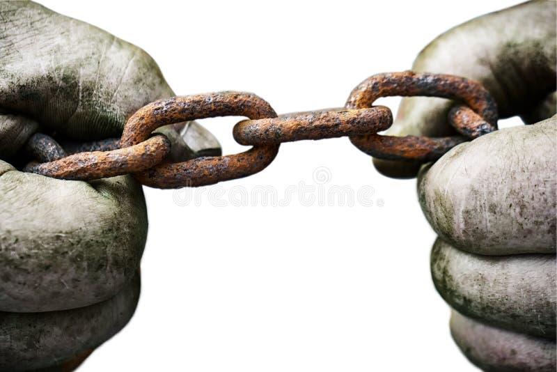 设法强有力的男性的手撕毁在白色隔绝的一个老生锈的链子 库存照片
