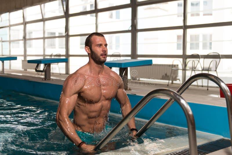 Download 设法的人离开游泳池 库存图片. 图片 包括有 男性, 健康, 有吸引力的, 生活方式, 纵向, 查找, 保镖 - 62535963