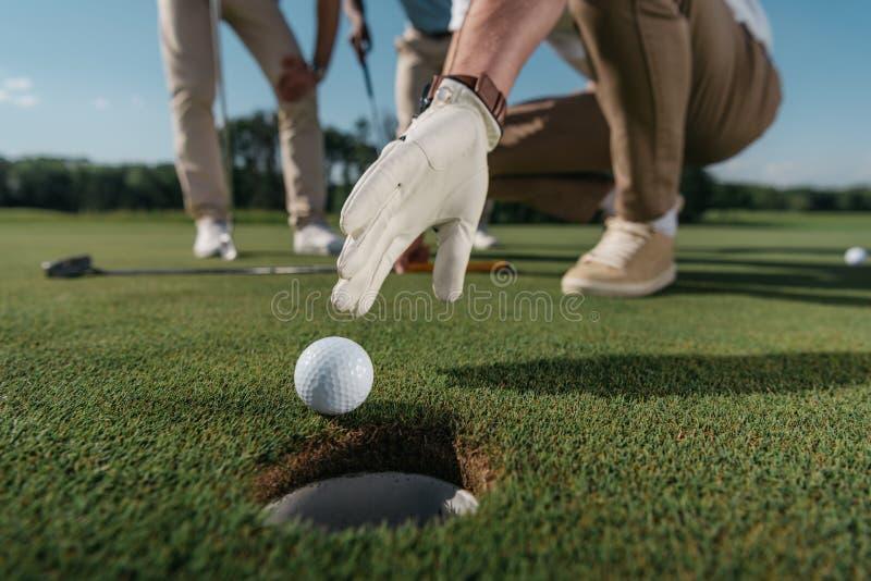 设法的手套的高尔夫球运动员在孔附近得到球 库存照片
