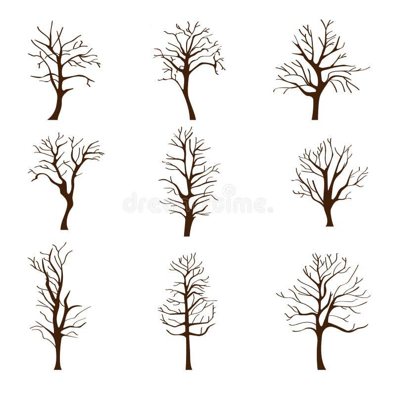 设置不同的树,不用叶子在秋天或冬天 向量例证