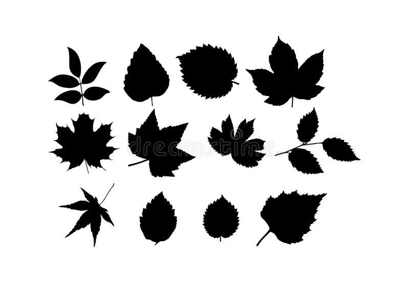 设置不同的植物和树叶子  简单的设计 皇族释放例证