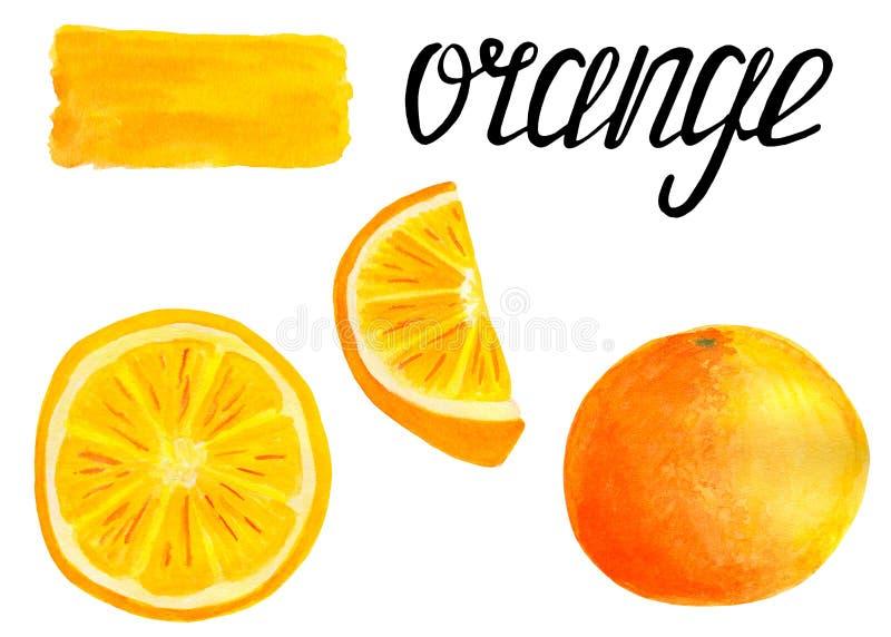 设置与刷子污迹和在书法上写字的水彩橙色柑橘friut 免版税库存图片