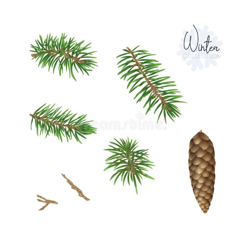 设置与圣诞节植物 向量例证