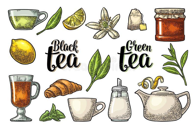 设置与字法的茶 传染媒介葡萄酒板刻 向量例证
