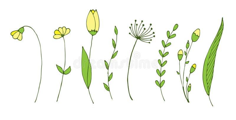设置与春天分支和花 设计的被隔绝的元素 皇族释放例证