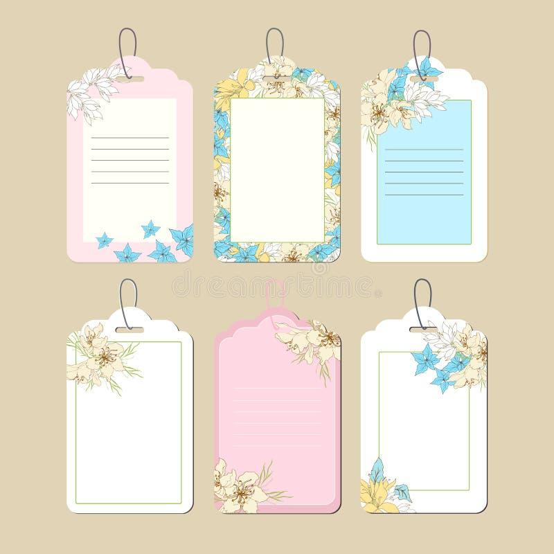 设置与春天花饰的价格标签 与桃红色和黄色花的语篇框架图 r 皇族释放例证