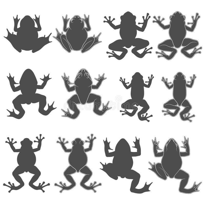 设置与树和河青蛙的黑白例证 r 向量例证