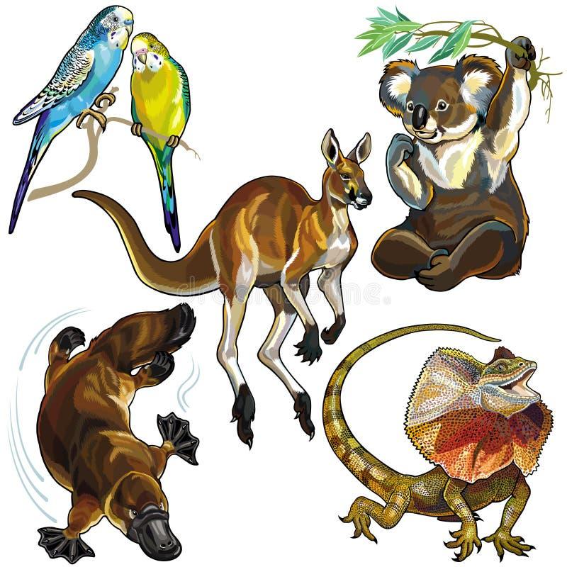 设置与澳大利亚的野生动物 向量例证