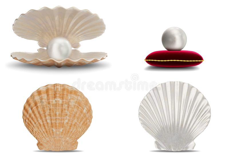 设置与珍珠里面的海壳 汇集宝石,妇女的首饰,珍珠层小珠 在红色天鹅绒枕头的珍珠 设置海 库存例证