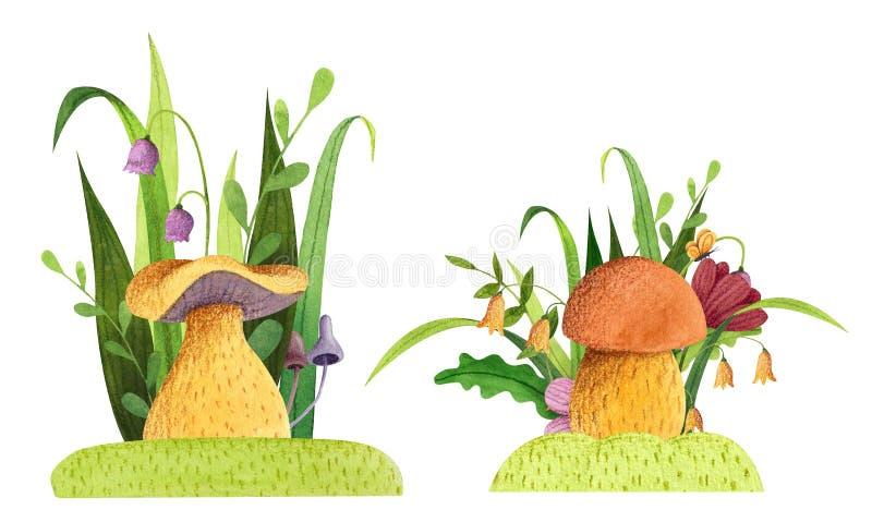 设置与草的蘑菇,花,蝴蝶,叶子 免版税库存图片