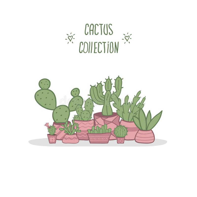 设置仙人掌和多汁植物庭院罐的 向量例证