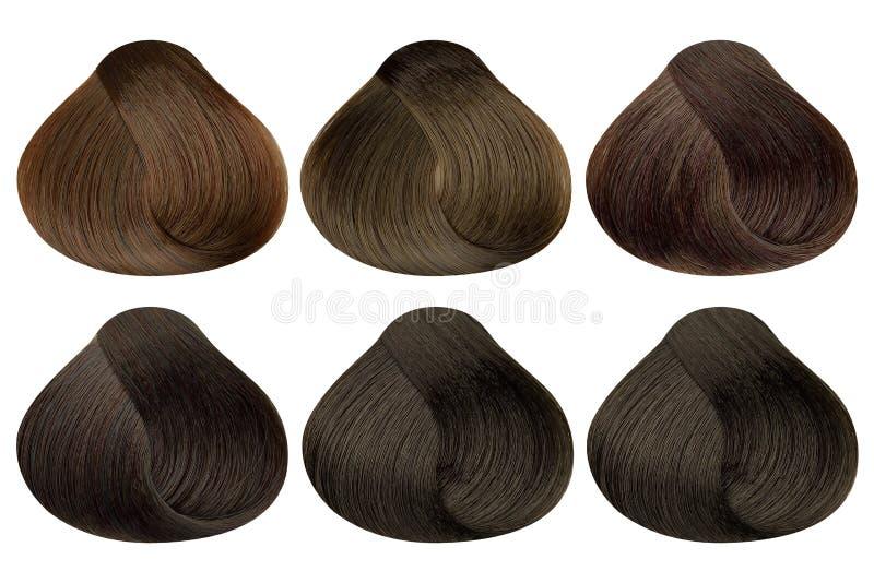 设置六个不同棕色发色样品& x28锁;焦糖、金黄咖啡、赤褐色,黑暗的赤褐色,自然褐色和黑暗 图库摄影