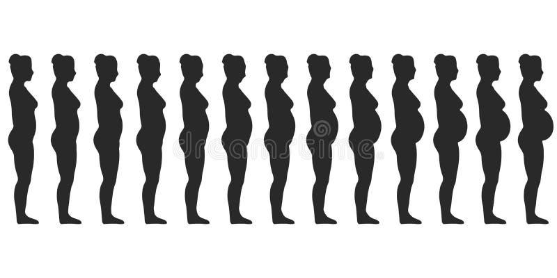 设置剪影怀孕的女性妇女,在一个妇女` s身体上的变化在怀孕期间 库存例证
