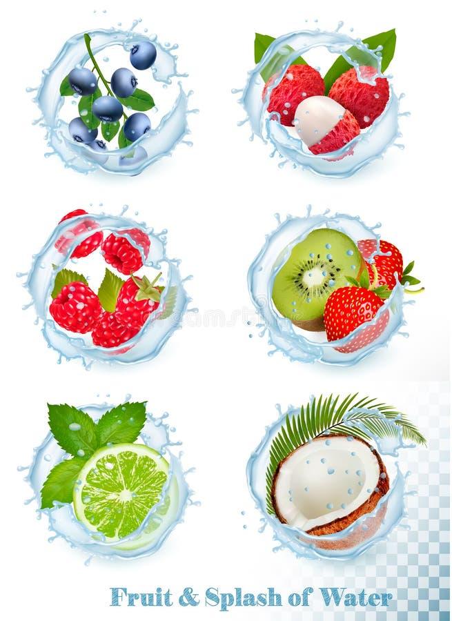 设置另外水飞溅与果子和莓果 蓝莓,lychee, 库存例证
