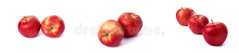 设置在白色背景的红色苹果 红色水多的苹果与黄色斑点的在白色背景 j的构成 免版税库存照片
