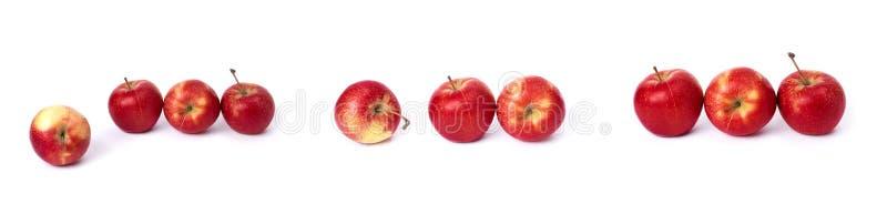 设置在白色背景的红色苹果 红色水多的苹果与黄色斑点的在白色背景 j的构成 库存图片