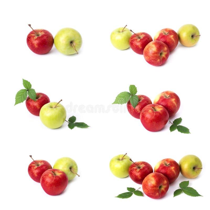 设置在白色背景的红色苹果 红色水多的苹果与黄色斑点的在白色背景 j的构成 库存照片