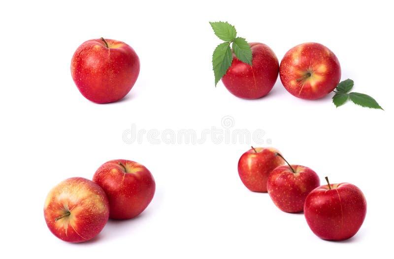 设置在白色背景的红色苹果 红色水多的苹果与黄色斑点的在白色背景 ju的构成 免版税库存照片