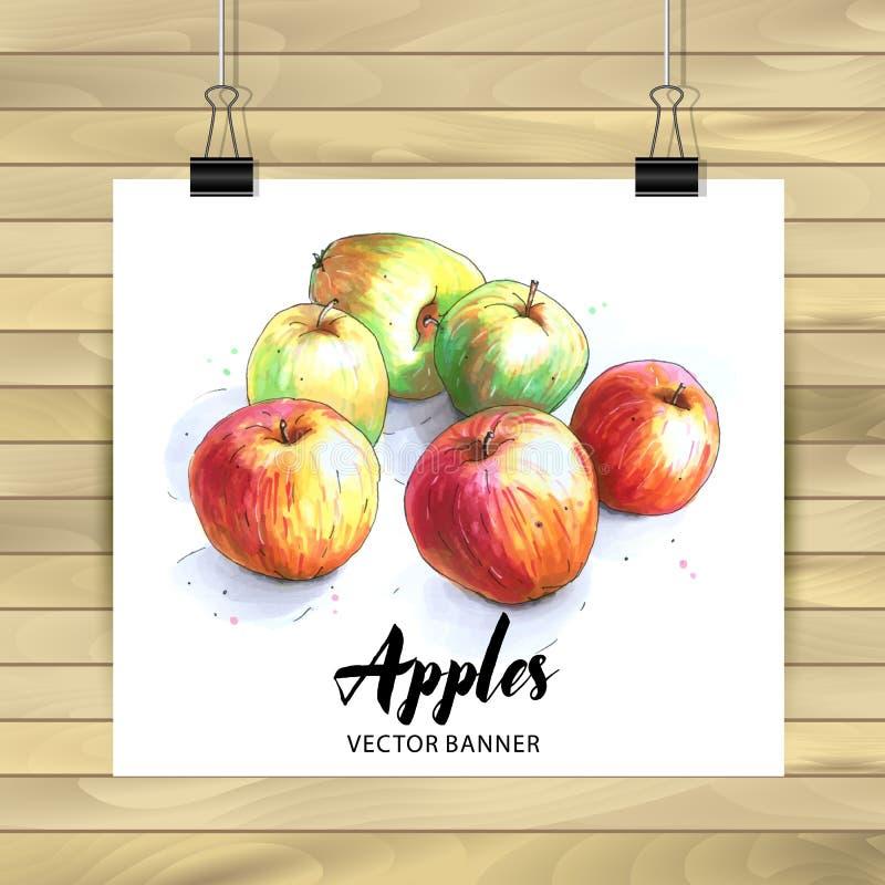 设置手拉的果子 苹果果子的传染媒介例证 库存例证