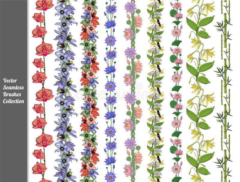 设置手拉的花卉无缝的刷子 香草,莲花,pasque,兰花,竹子 库存例证