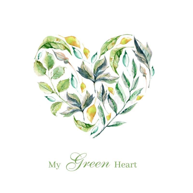 设置手画水彩植物、绿色叶子和草本,p 库存例证