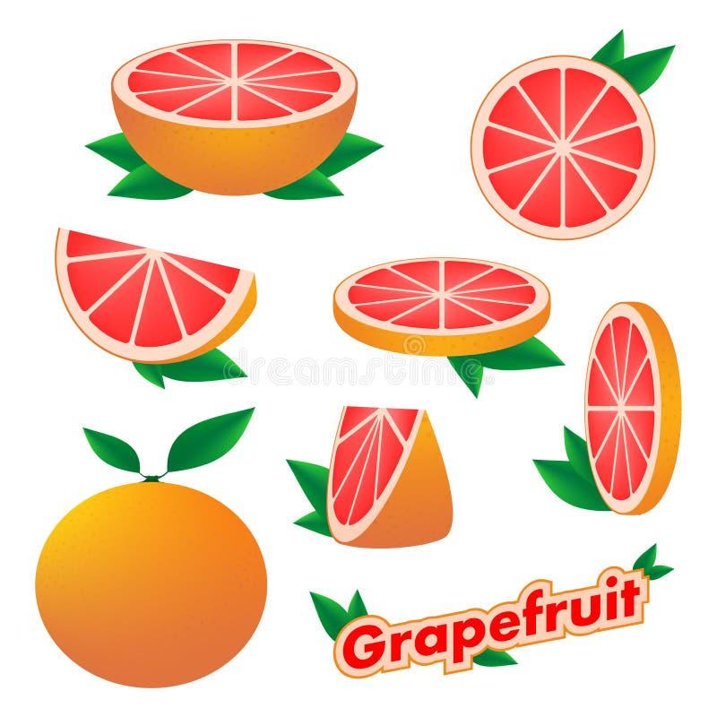 设置新鲜的柑橘贴纸与皮肤的切的和整个葡萄柚果子与在白色背景的绿色叶子 h的概念 皇族释放例证