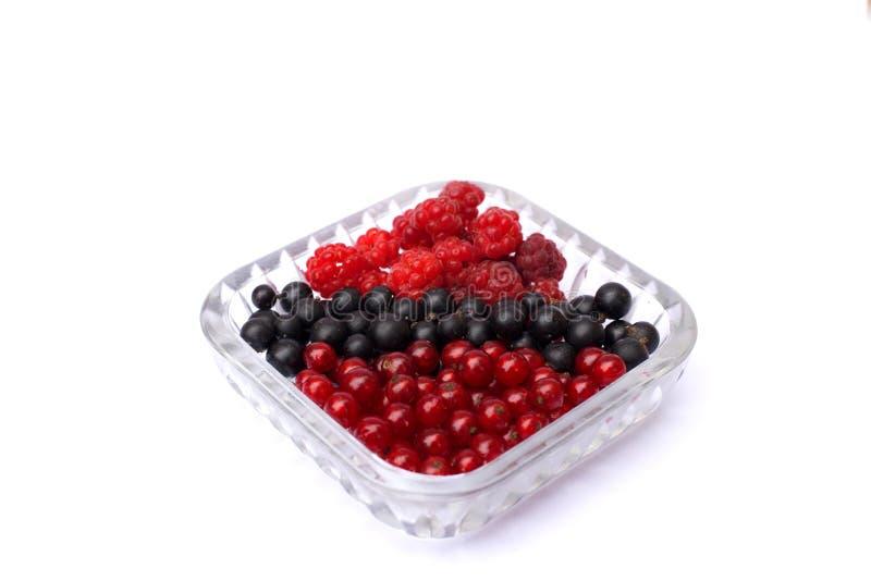 设置无核小葡萄干和莓新鲜的莓果在一块板材在白色背景 被隔绝的莓果 免版税库存图片