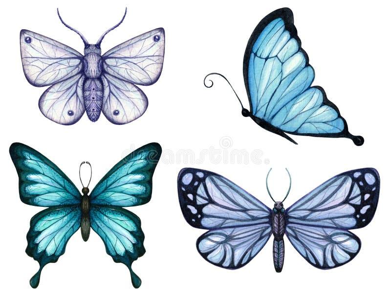 设置水彩蓝色口气蝴蝶和飞蛾  向量例证