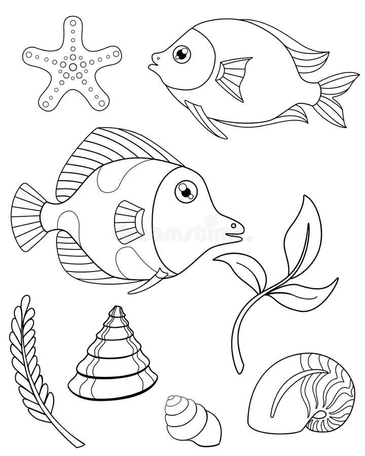 设置水族馆或热带鱼、植物和软体动物上色的 导航与鱼、海星海藻和壳的线性图片 向量例证
