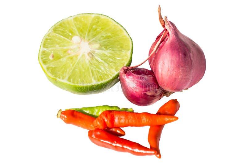 设置泰国辣汤,汤姆成份是被隔绝的泰国食物 免版税库存照片