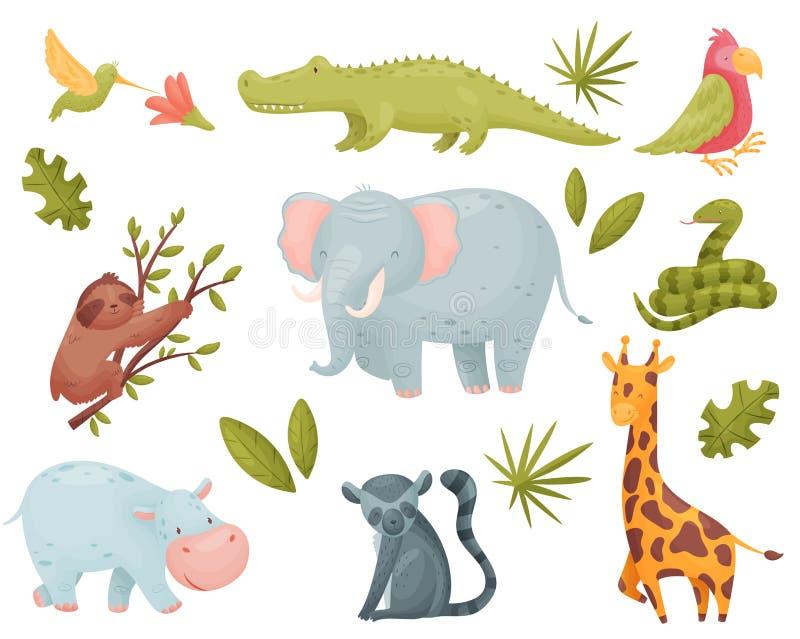设置热带动物 r 库存例证