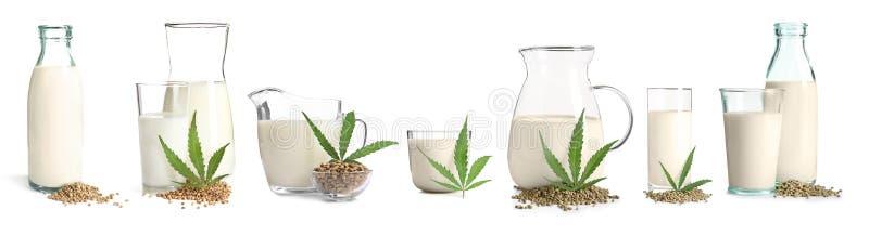 设置用不含乳制品的素食主义者大麻牛奶 图库摄影