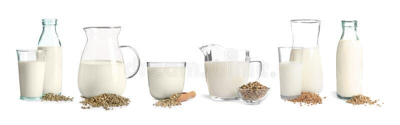 设置用不含乳制品的素食主义者大麻牛奶 库存照片