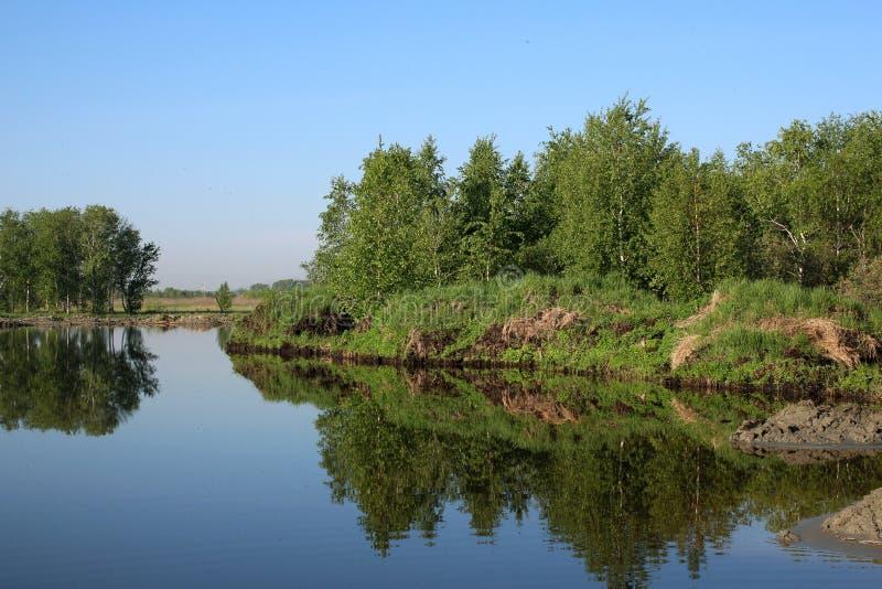 设置的秋天太阳的光芒的森林在河岸的 免版税库存照片