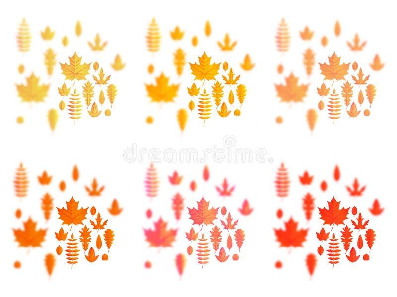 设置秋叶或秋叶象 槭树、橡木或者桦树和欧洲花楸叶子 落的白杨树、山毛榉或者榆木和 皇族释放例证