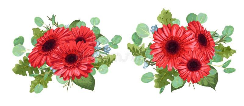 设置红色大丁草花束,玉树,并且蜡开花isolat 向量例证