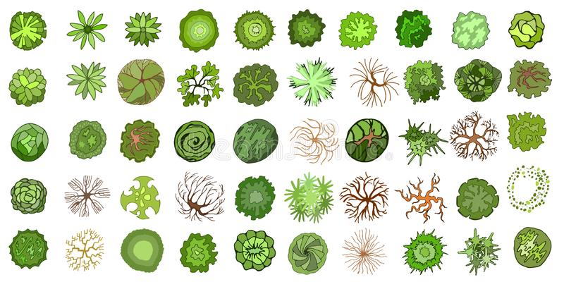 设置色的手拉的风格化顶视图树和植物 图表,隔绝在白色,传染媒介 免版税库存图片