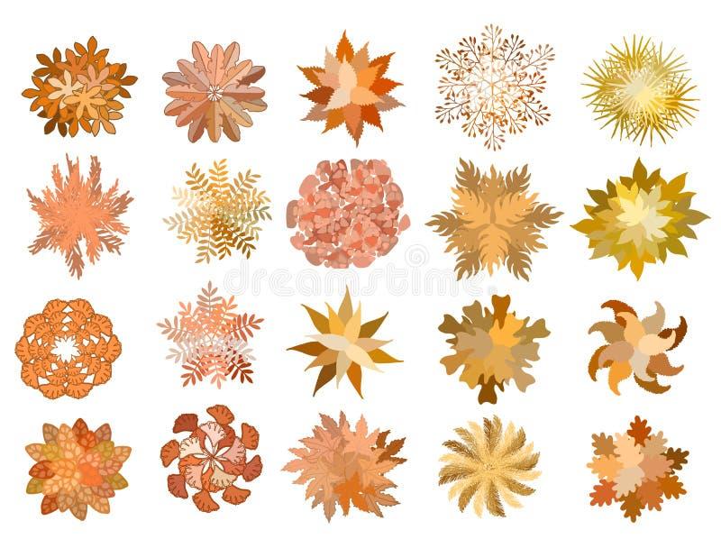 设置色的手拉的风格化顶视图秋天树和植物 图表,隔绝在白色,传染媒介 库存照片