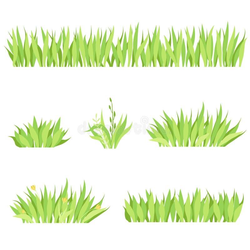 设置草的不同的水平的构成 白色背景的被隔绝的庭院草坪 库存例证