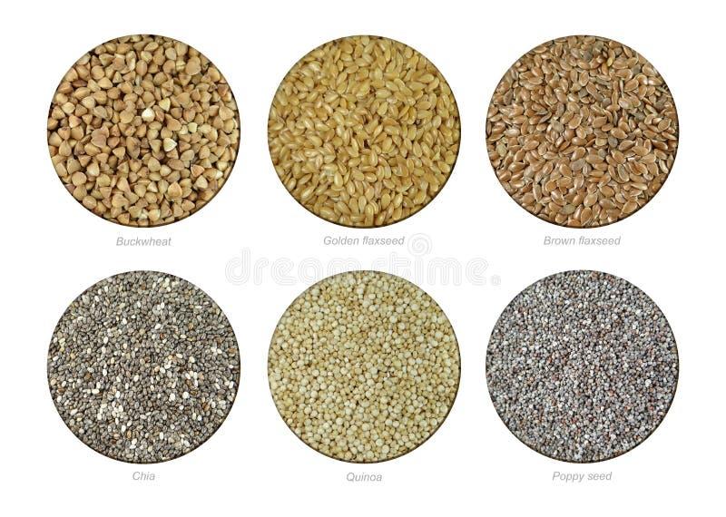 设置荞麦,金黄亚麻、布朗亚麻、Chia、奎奴亚藜和罂粟种子 免版税库存照片