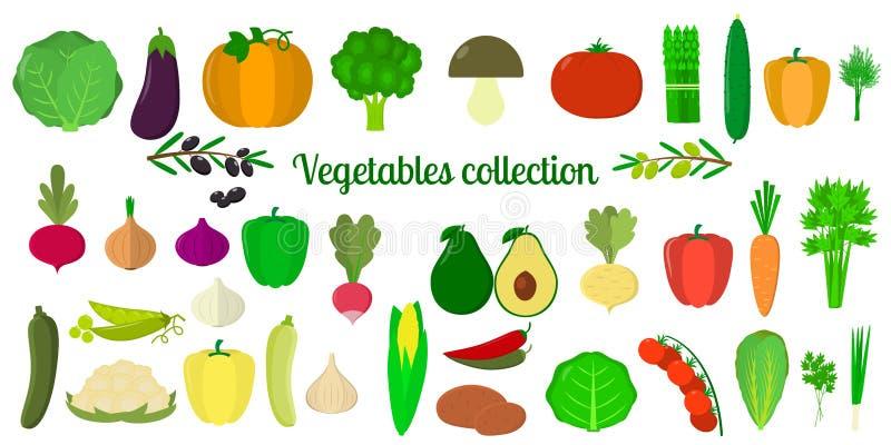 设置菜的汇集,并且绿色,兆象设置在白色背景的三十八个元素 对您的设计  库存例证