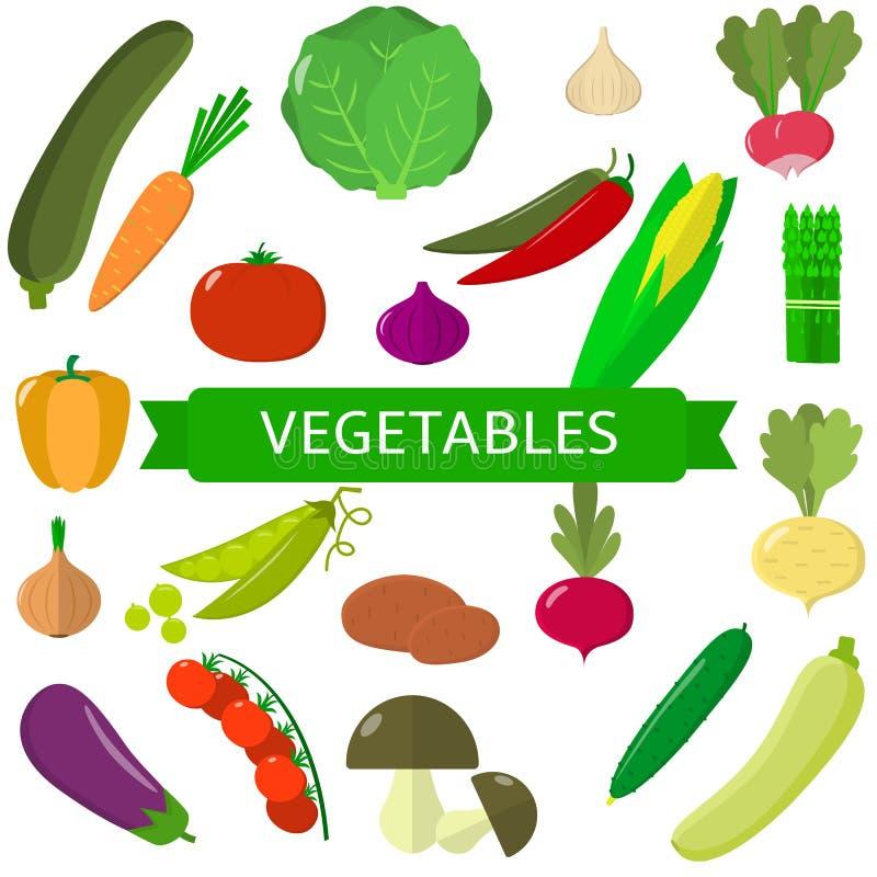 设置蔬菜 在白色背景隔绝的有机素食健康食物 向量 向量例证