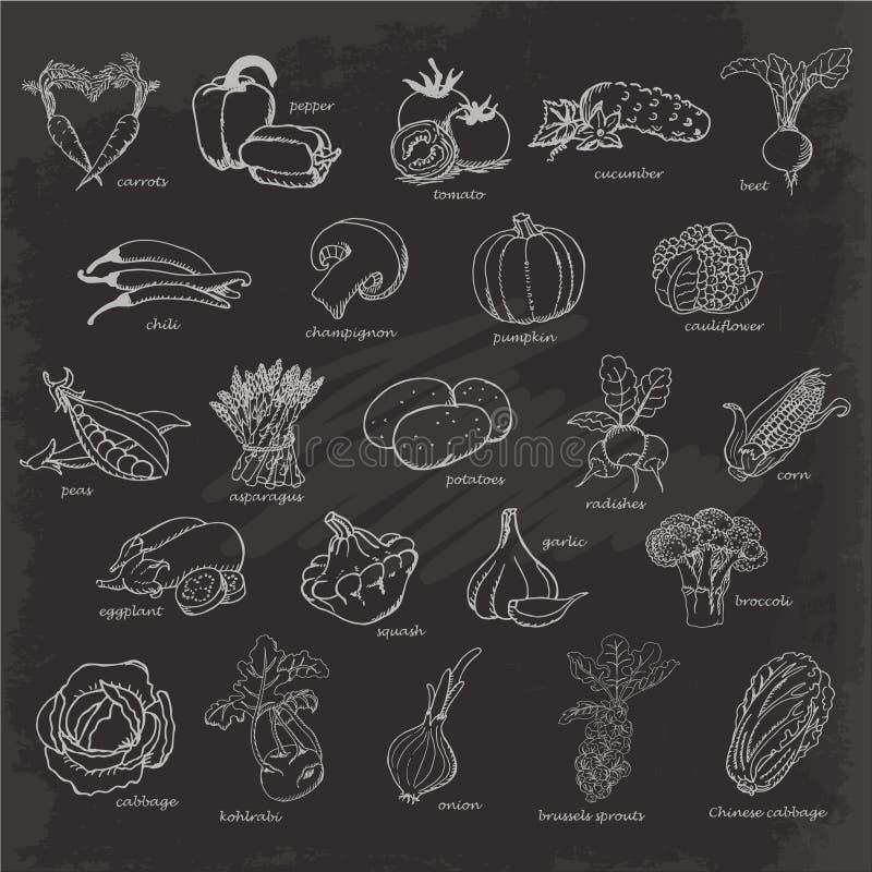 设置蔬菜 导航手图画在黑背景的剪影例证 库存例证