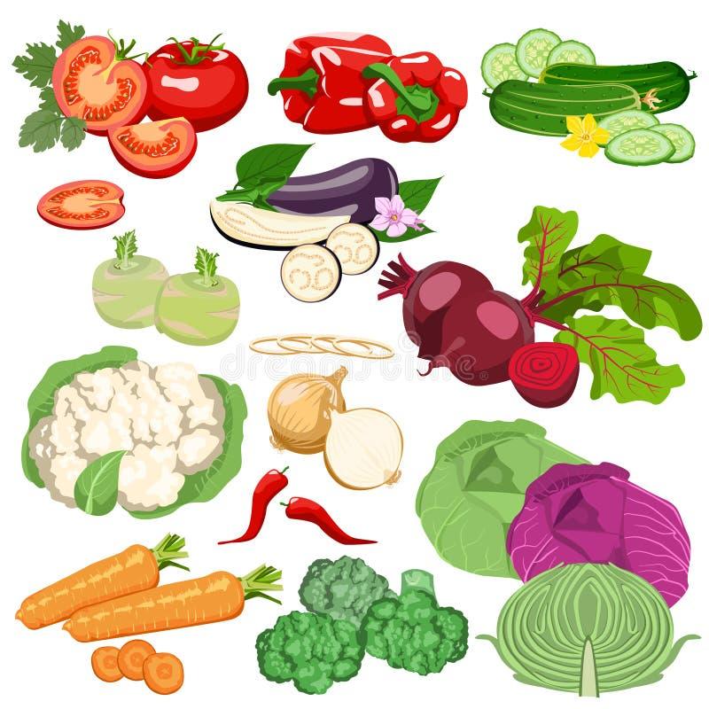 设置蔬菜 库存例证