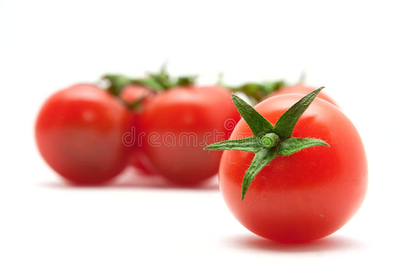 设置蕃茄 免版税库存图片