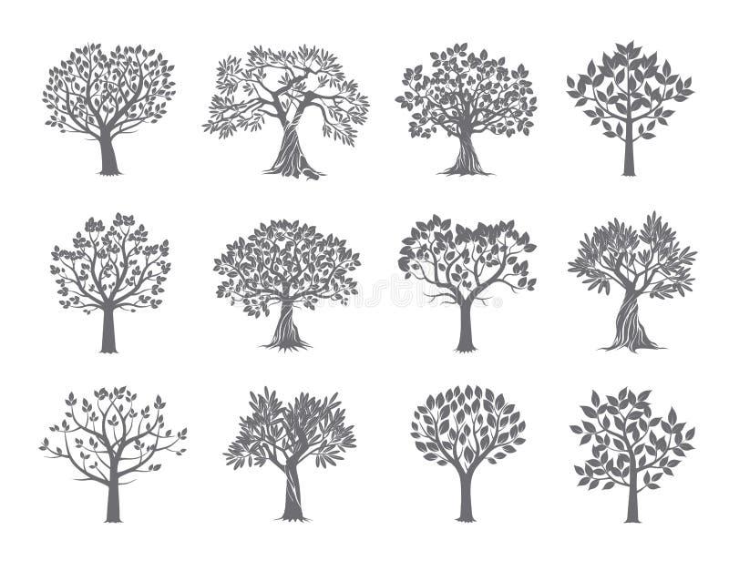设置结构树 也corel凹道例证向量 皇族释放例证